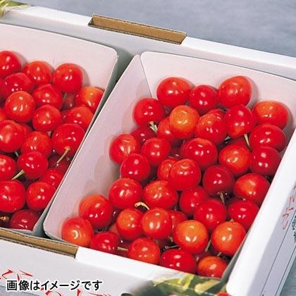 さくらんぼ(佐藤錦) 700g