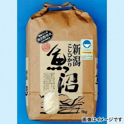 特別栽培・魚沼産コシヒカリ