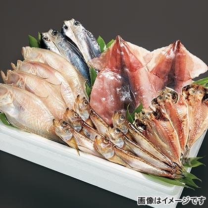日本海一夜干セット B