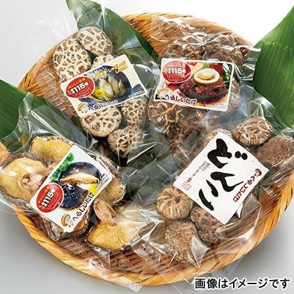 鳥取県産乾椎茸 115号