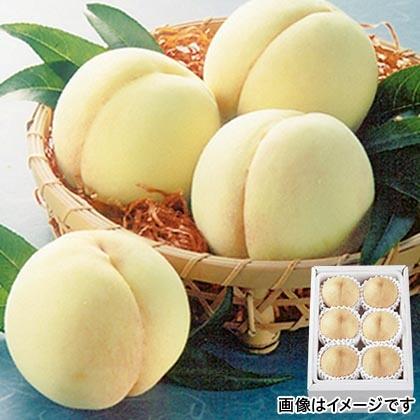 岡山白桃 1.4kg
