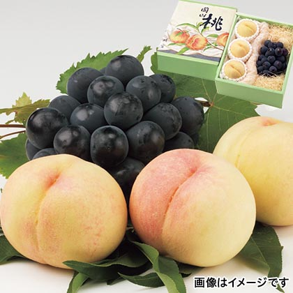 岡山産白桃と種なしピオーネ
