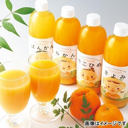 マルワフルーツ柑橘アソート 6本入