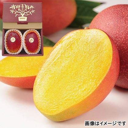 熟赤の雫 2個入 化粧箱