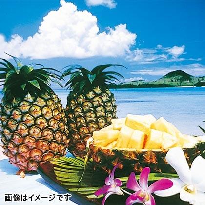 石垣島産パイン 4.5kg