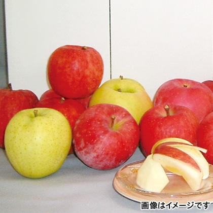 りんごセット 5kg