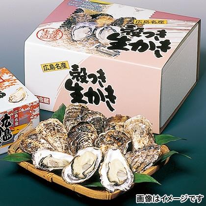 広島県産殻付生かき