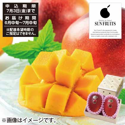 宮崎県JA西都産完熟マンゴー太陽のタマゴ