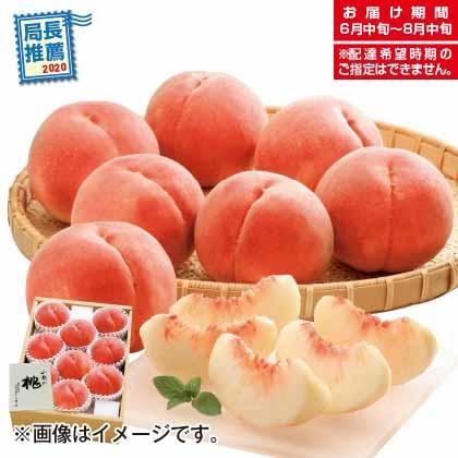 萩原フルーツ農園の桃B