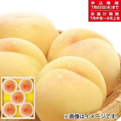 岡山の白桃 A