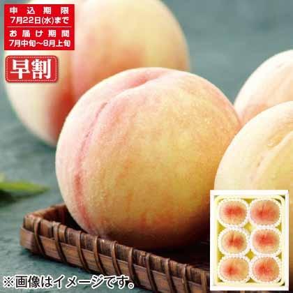 岡山東モモ部会の白桃