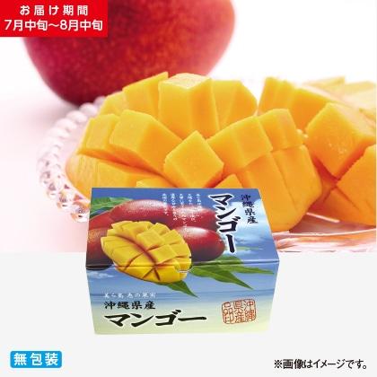沖縄本島北部産マンゴー 1kg