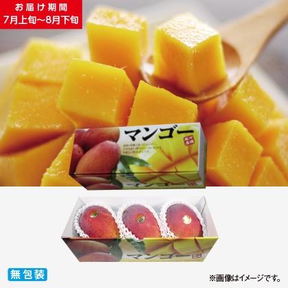 沖縄県産完熟マンゴー 1kg