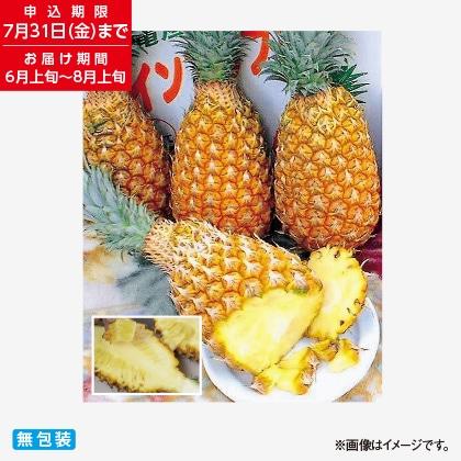 沖縄県産ボゴールパイン 2kg