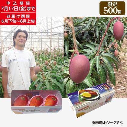 沖縄県産マンゴー1kg