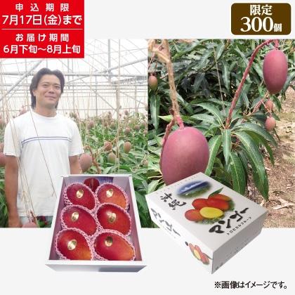 沖縄県産マンゴー2kg