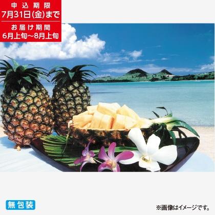 石垣島産パイン 7kg