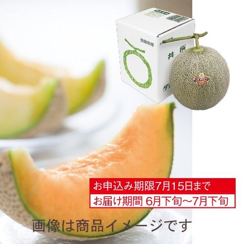 北海道産 夕張メロン