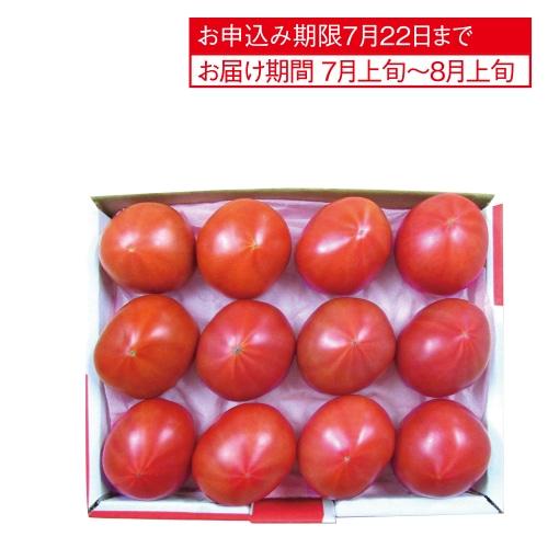 静岡県又は長野県産 アメーラトマト