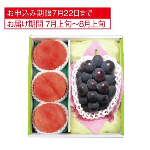 ピオーネ&山梨 御坂の水蜜桃