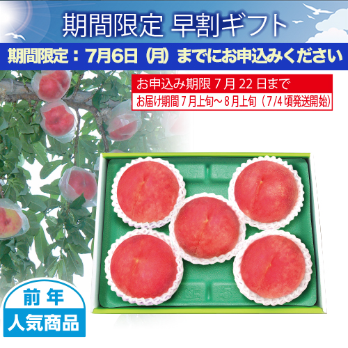 山梨県産 甲斐の水蜜桃 5個