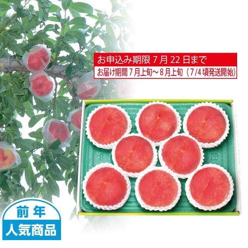 山梨県産 甲斐の水蜜桃 8個