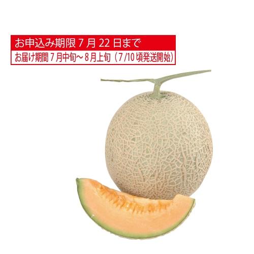 北海道産 赤肉メロン