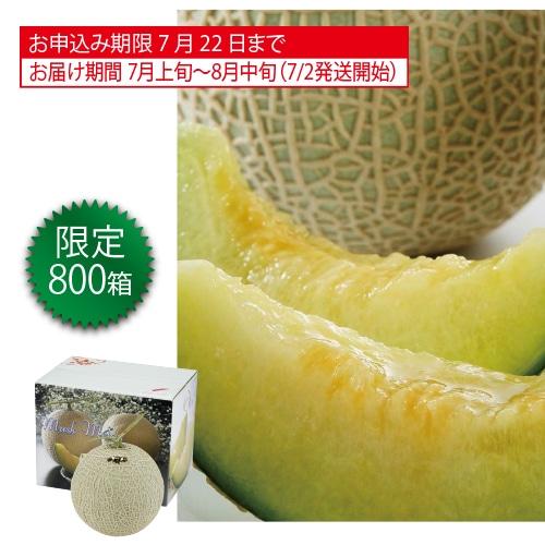 愛知県産マスクメロン1個