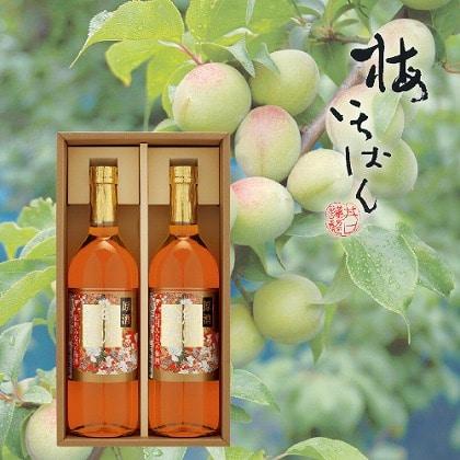 本格梅酒 原酒紀州絵巻