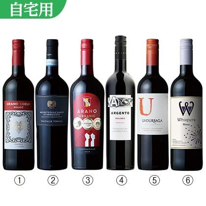 世界周遊赤ワイン6本セット