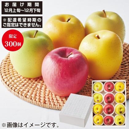 定松 5種林檎の詰合せ