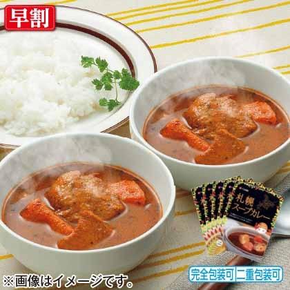 札幌スープカレー中辛5個