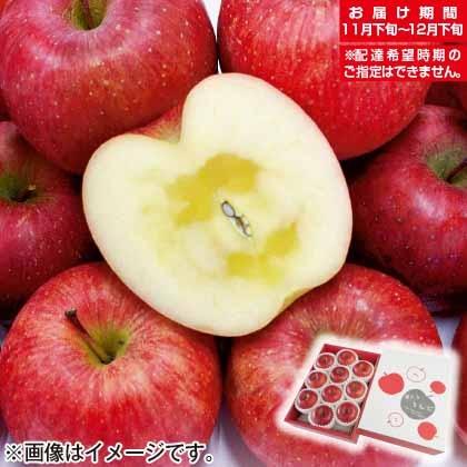 青森県産 蜜入りサンふじ2.5kg