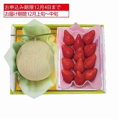 熊本県産 マスクメロン&栃木県産 とちおとめ苺