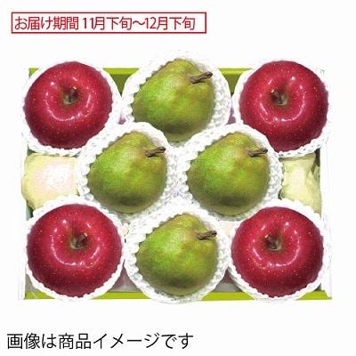 青森県産 サンふじりんご&山形県産 ラ・フランス