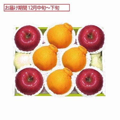 佐賀県産 デコポン&青森県産 サンふじりんご