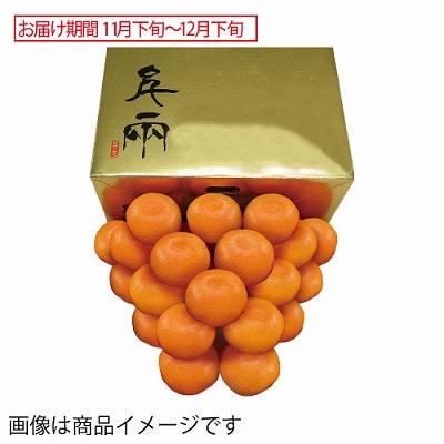 愛媛県産 日の丸ゴールドみかん