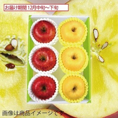 青森県産 蜜入りサンふじりんご&岩手県産 純情りんご はるか