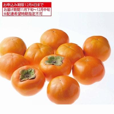 福岡県産 富有柿