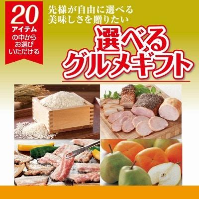カタログ(冊子)選べるギフト オレンジ