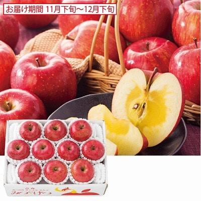 青森 蜜入りサンふじりんご「みつげつ」 2.7kg