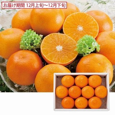 天草オレンジ