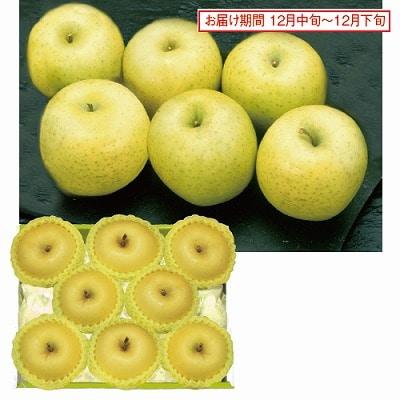 岩手県産 純情りんご「はるか」