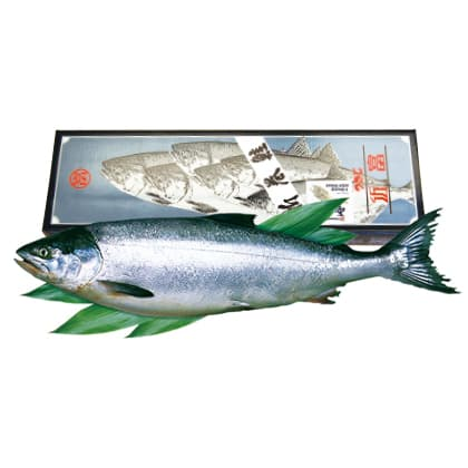 新巻鮭(銀聖)