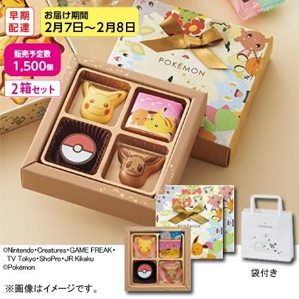 【早期配達】チョコセット S 2箱セット