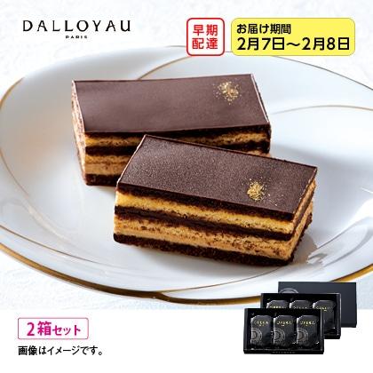 【早期配達】〈ダロワイヨ〉オペラトーキョー 2箱セット