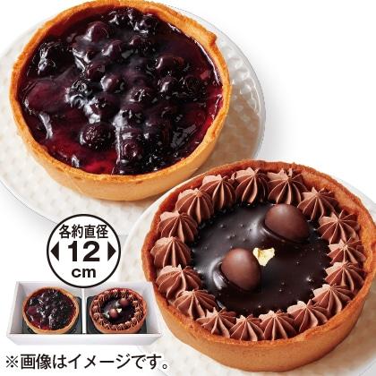 ブルーベリー&チョコクリームのチーズケーキセット