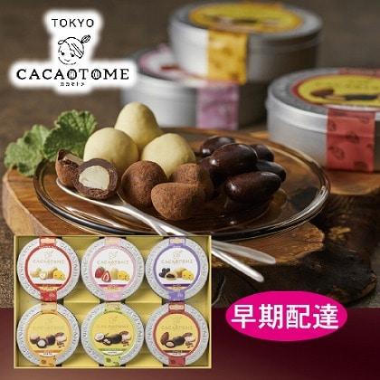【早期配達】<カカオトメ>カカオトメ チョコレートギフト