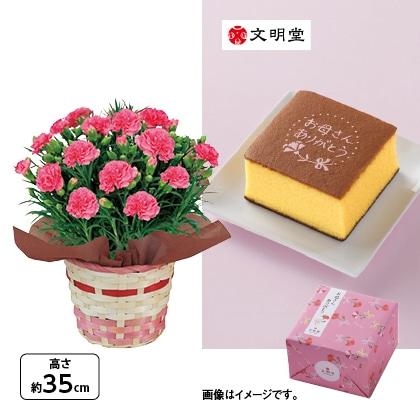 カーネーション(ピンク)&〈文明堂〉カステラ