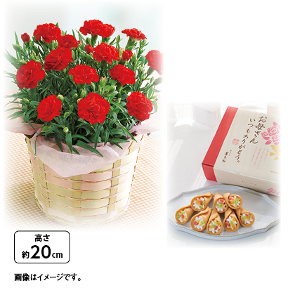 花束風焼き菓子とカーネーション鉢